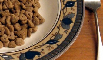 You can treat your four legged fur baby to some of your foods with these 10 safe people foods.