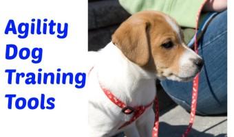 Agility Dog Training Tools