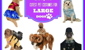 Pet costumes for large dogs