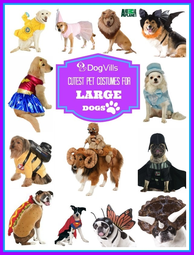 How to Measure Your Pet for the Cutest Costumes for LARGE dogs