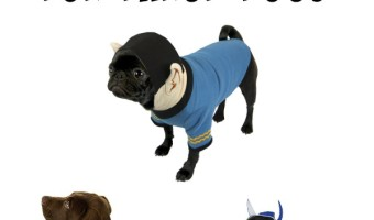 If you have pets that go in and outside during winter months, then these 5 Great Winter Costumes For Large Dogs are sure to come in handy. Check out our favorites out there for both style and functionality