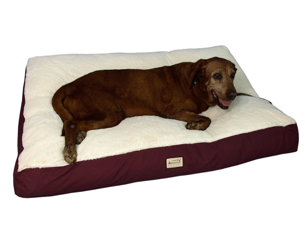 Best Dog Beds For Large Dogs Dogvills