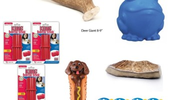 Best Dog Chew Toys For Large Dogs