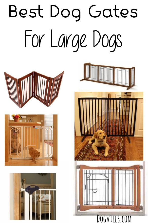 Best Dog Gates For Large Dogs Dogvills