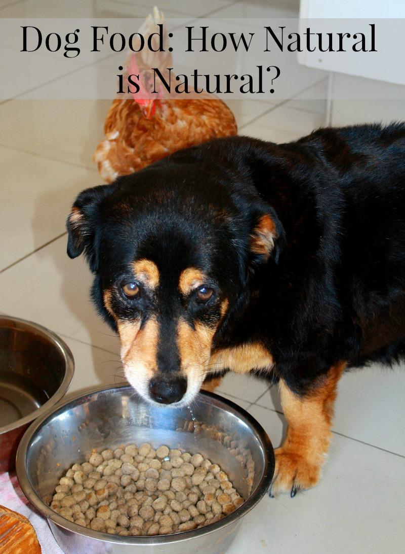 "Just how ""Natural"" is Natural Dog Food?"