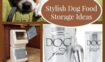 Stylish Dog Food Storage Ideas for Your Home