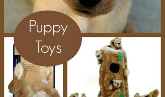 One of the best things about new babies is the adorable toys; and ones for fur babies are no exception! Here are the top five most adorable puppy toys for your new dog's toy box!