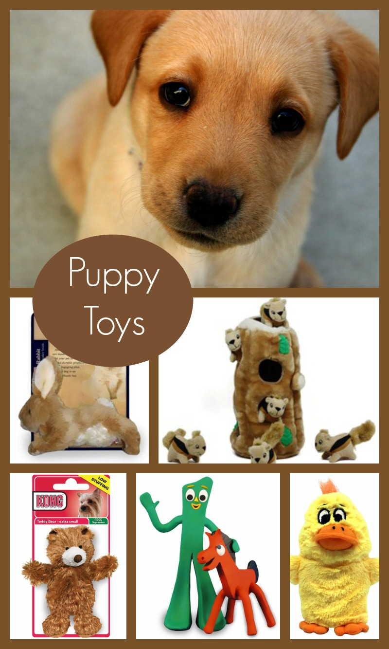 5 Adorable Puppy Toys Your Dog is Begging For!