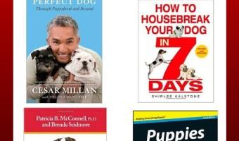 7 Great Puppy Training Books