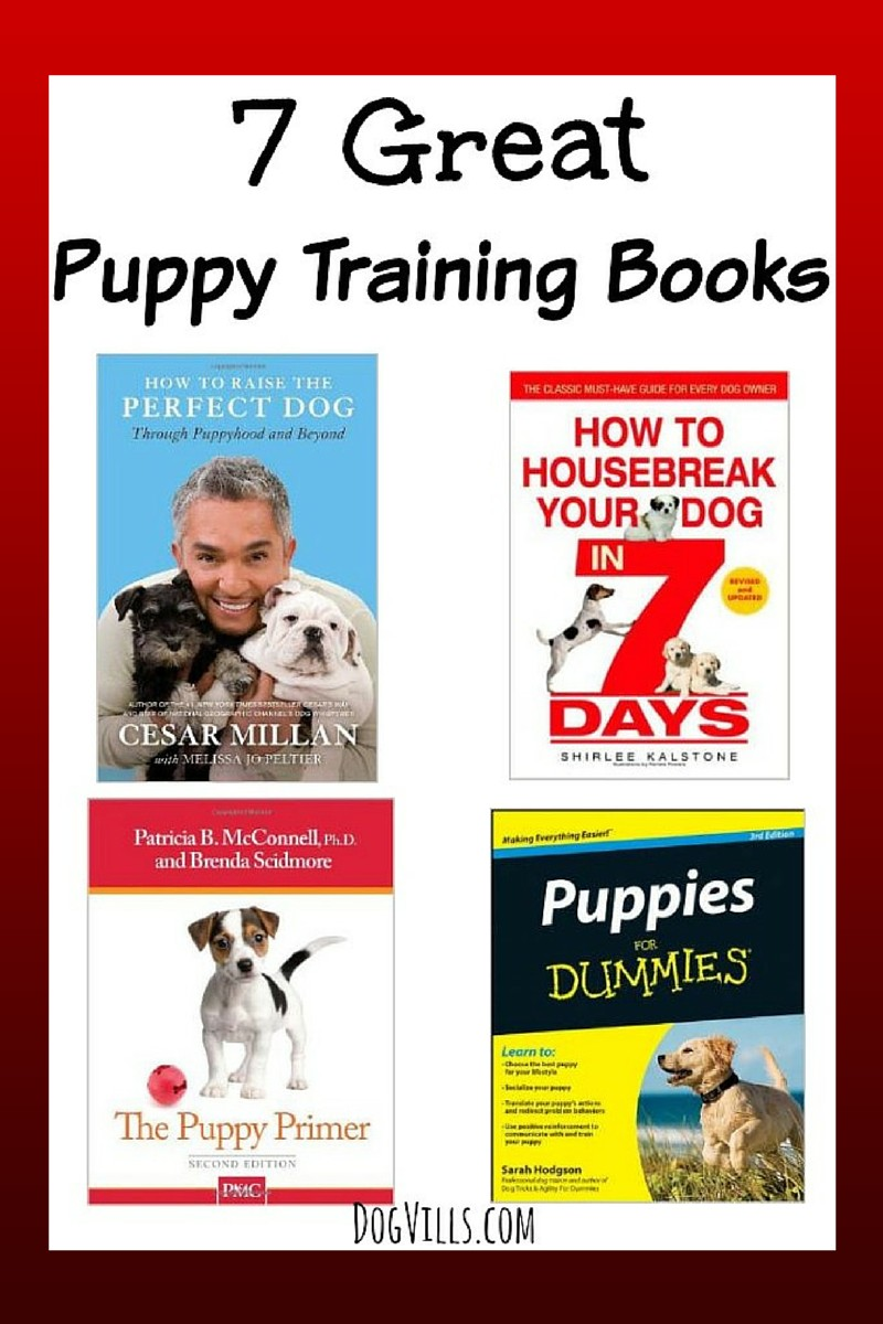 7 Great Puppy Training Books