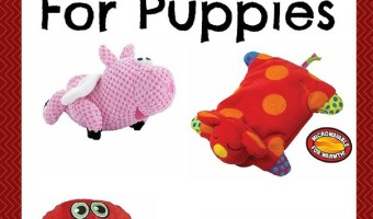 Popular Plush Toys For Puppies to Prevent Chewing