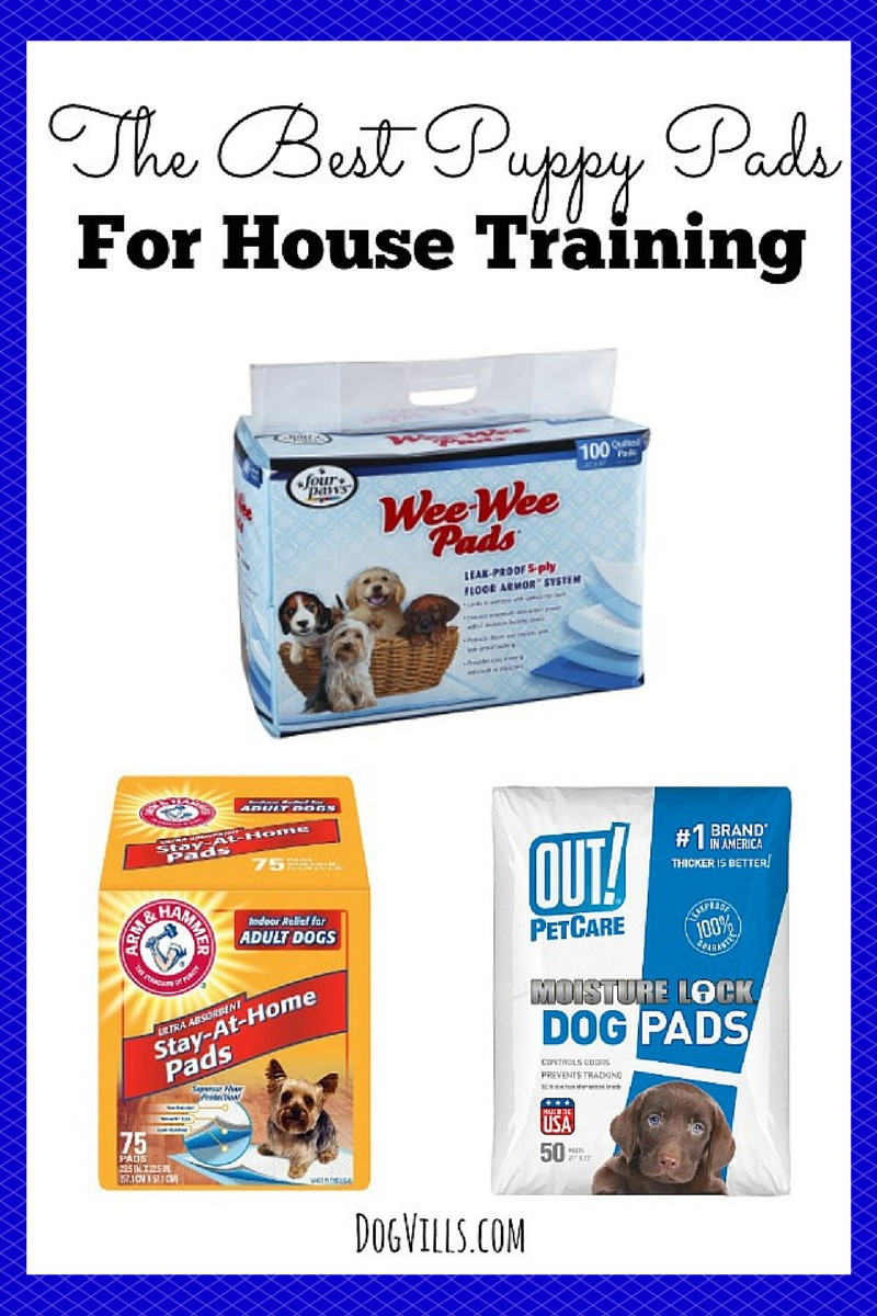 The Best Puppy Pads For House Training