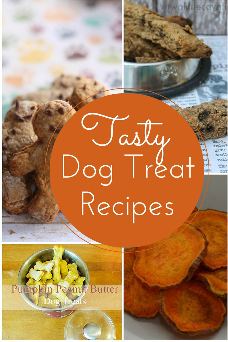 Healthy Homemade Dog Treats For Training
