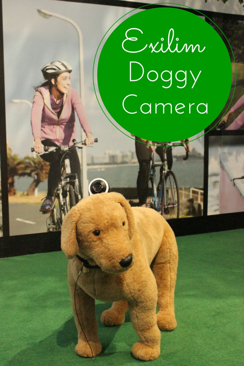 See What Your Pet Sees with Exilim FR10 Dog Camera