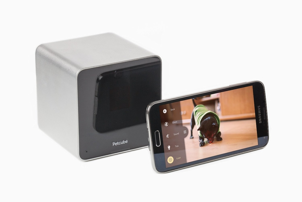 Ever wonder what your dog does when you're away? Now you can find out with Petcube camera! Plus, interact with your dog from anywhere! So cool!