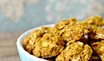 Easy Hypoallergenic Dog Treat Recipe: Pumpkin and Oats Dog Treats