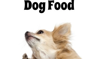 Reasons To Buy Sensitive Skin Dog Food