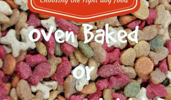 Which is a better dog food for your pet- oven baked or extruded kibble? Learn the difference between the two main types of dog food kibbles & decide!