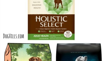 Whether your dog has skin irritations or allergies that cause upset tummies, these top Hypoallergenic Dog Food Brands will be a hit in their food dish.
