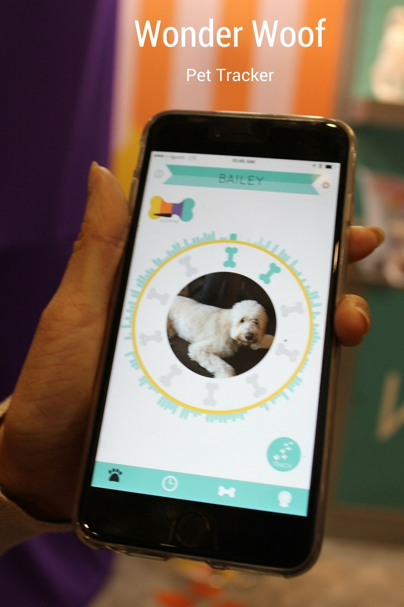 Track, Train and Socialize Your Dog with Wonder Woof