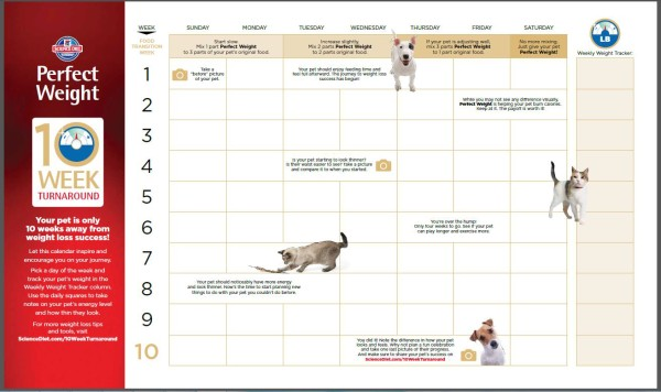 10 Week Turnaround Calender from Hills Perfect Weight