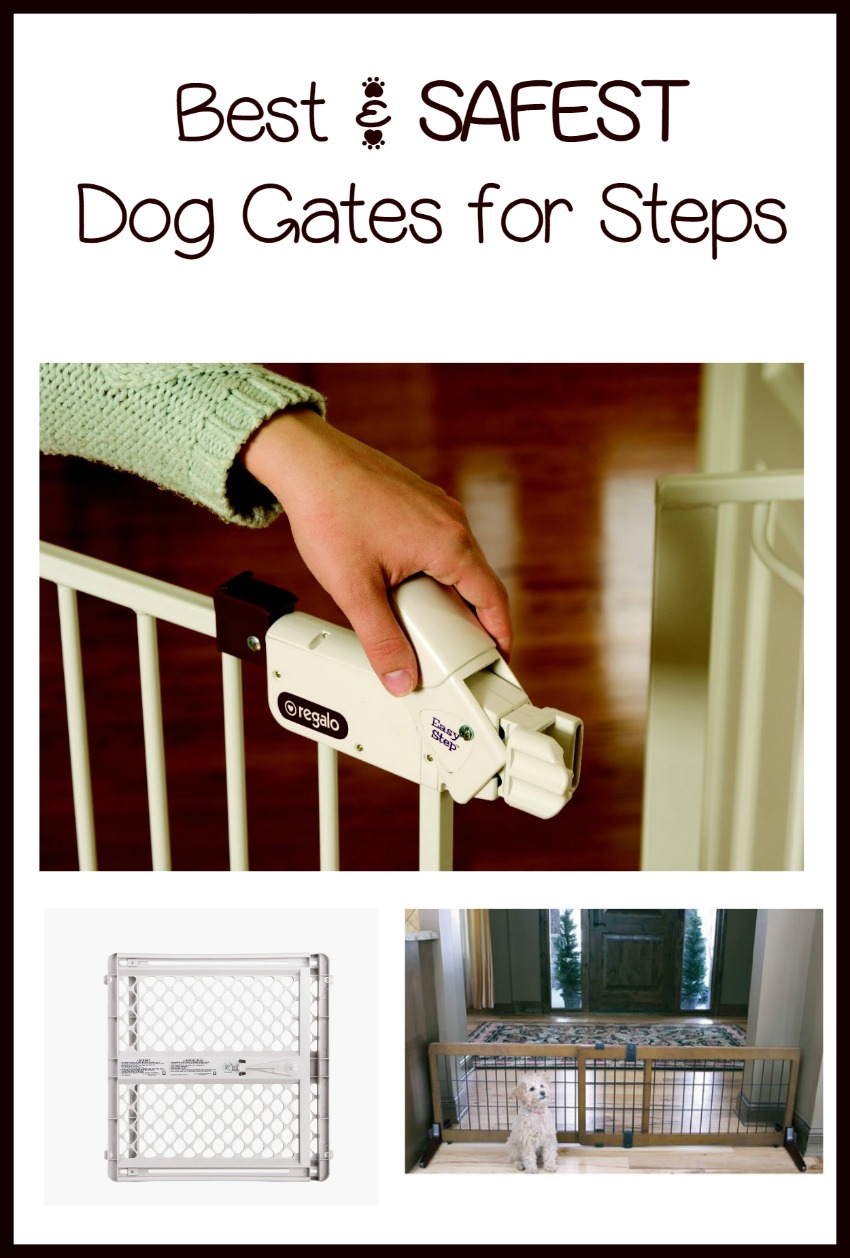 Dog Gates for Stairs – Safety First for You and Your Family