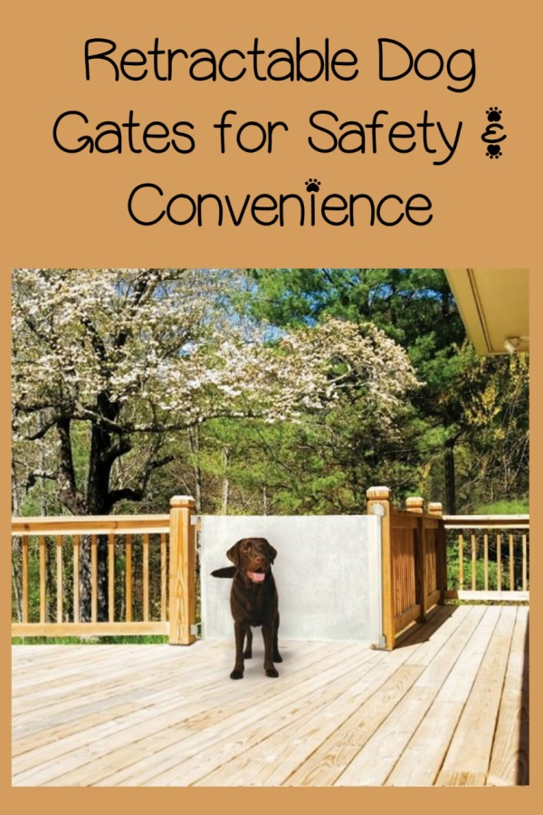 Retractable Dog Gates Safety And Convenience Dog Vills