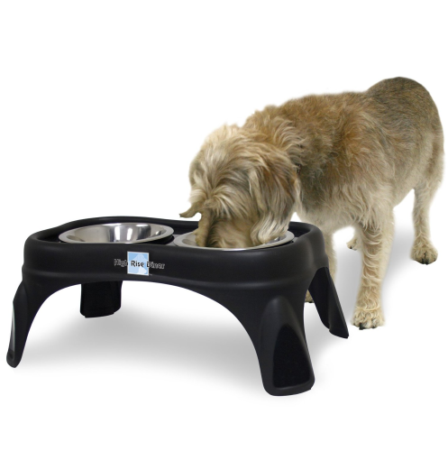 Right Height Cafe Feeder: Dog Easter Basket Gift Items