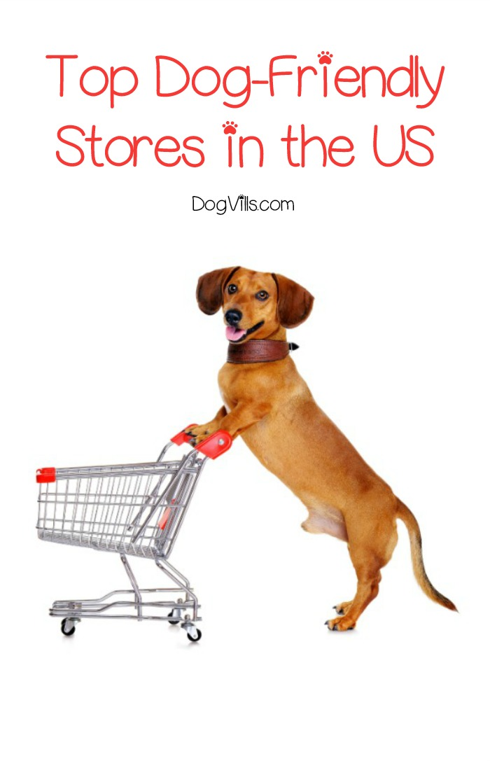 Major stores that allow dogs in the us extensive list solutioingenieria Choice Image