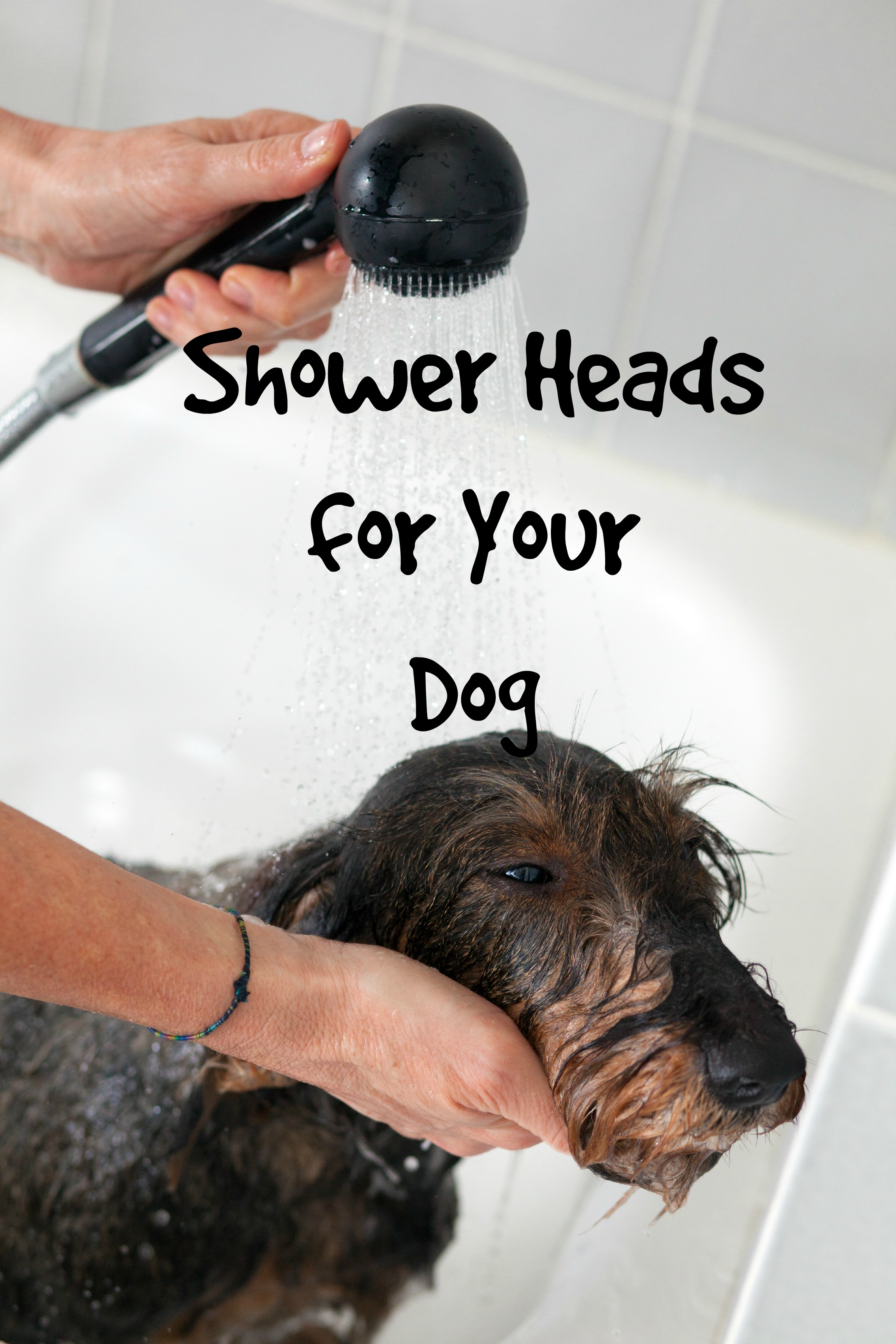 Choosing The Best Shower Heads For Your Dog - Hand held shower faucet attachment