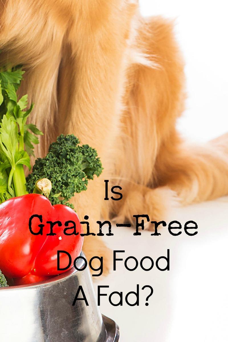 Is Grain-free Dog Food A Fad?