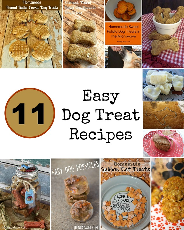 11 of the Easiest & Tastiest Homemade Dog Treat Recipes
