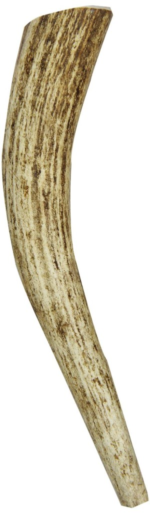 Newst Large Antler  hypoallergenic Dog Bone
