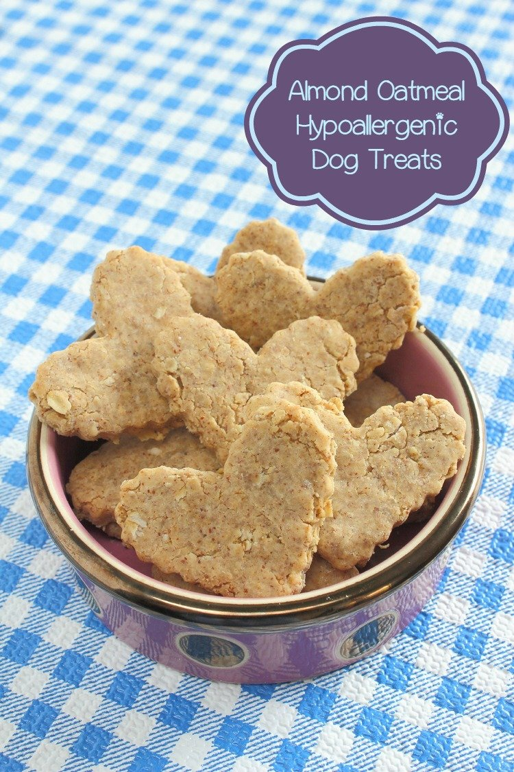 Spot's Favorite Almond Oatmeal Hypoallergenic Dog Treat Recipe