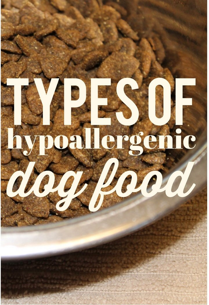 What are The Basic Types of Hypoallergenic Dog Food?