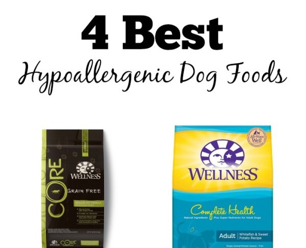 List Of Hypoallergenic Dog Food Brands