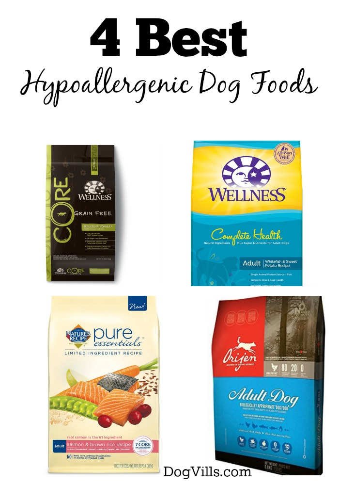 Best Hypoallergic Dog Food