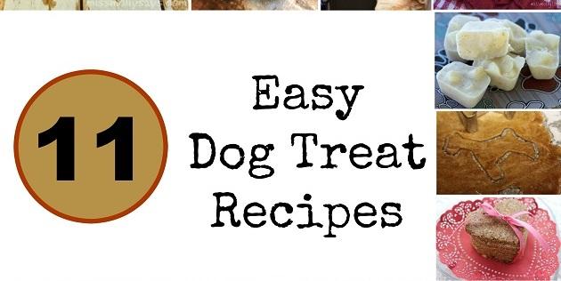 Easy Hypoallergenic Dog Food Recipes