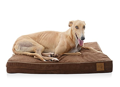 10 Best Hypoallergenic Dog Beds And Blankets Complete Guide