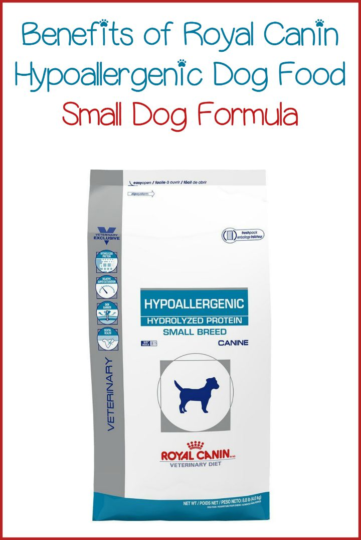 Royal Canin Hypoallergenic Food For Small Dogs