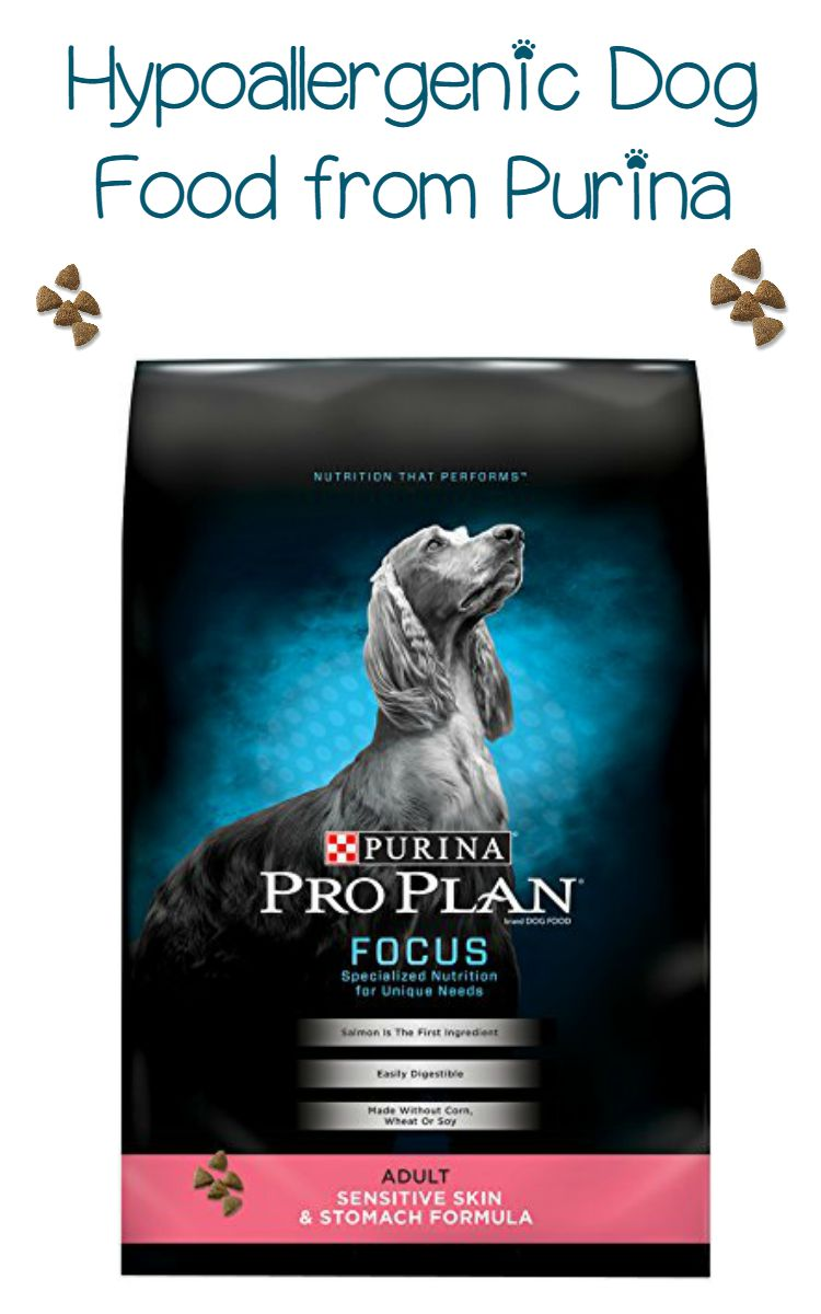 Hypoallergenic Dog Food from Purina – High Hypoallergenic Marks