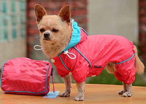 Keep your best canine friend warm, dry and totally on trend with these stylish waterproof dog jackets! Check them out now!