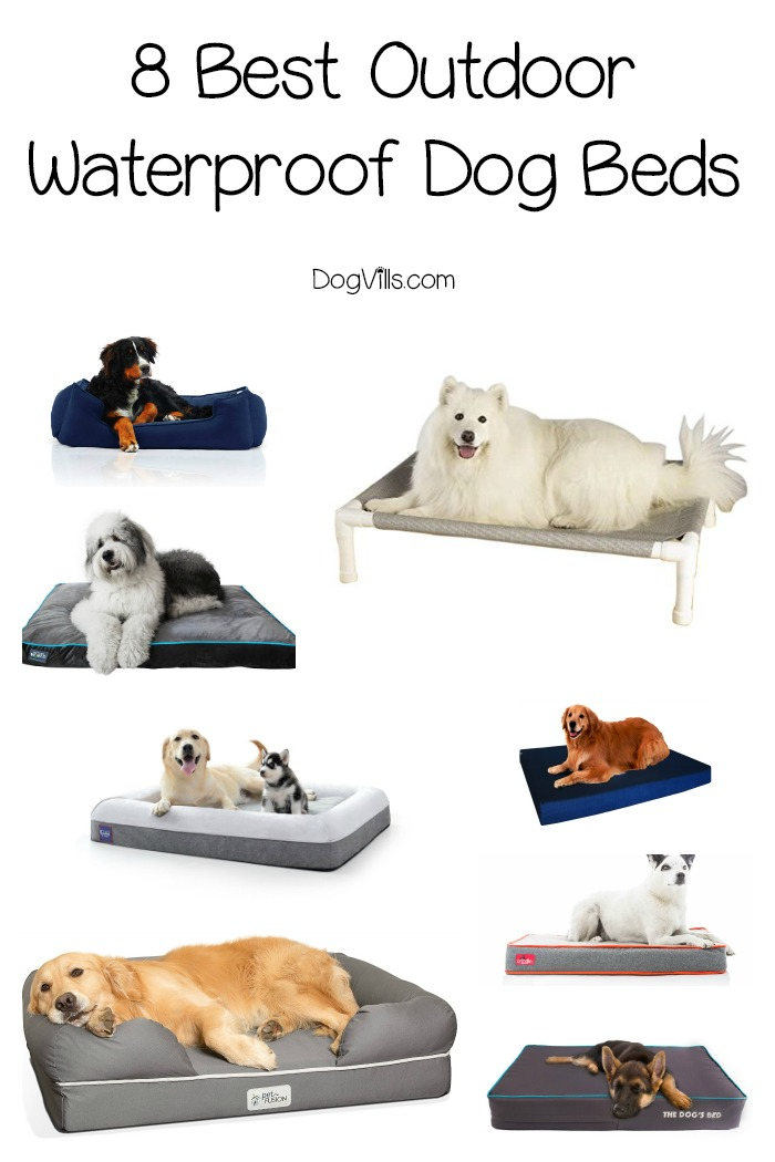 8 Best Outdoor Waterproof Dog Beds