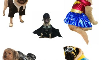 Cutest Movie Inspired Dog Costumes For Halloween
