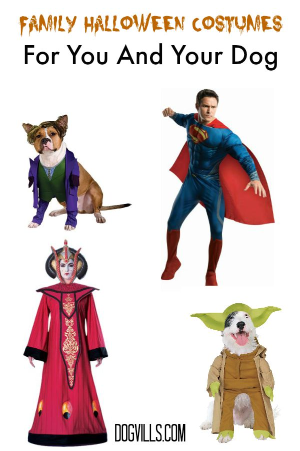 Family Halloween Costumes For You And Your Dog