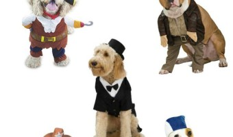 5 Handsome Halloween Costumes For Suave Boy Dogs