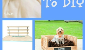 Why spend a fortune on dog beds for your pooch when you can make one of these great DIY Dog beds and get sewing!