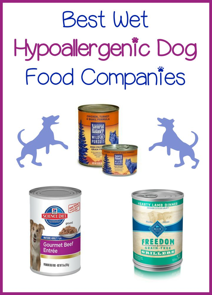 Natural Hypoallergenic Food For Dogs
