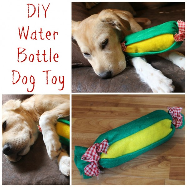 Water Bottle Crochet Dog Toy