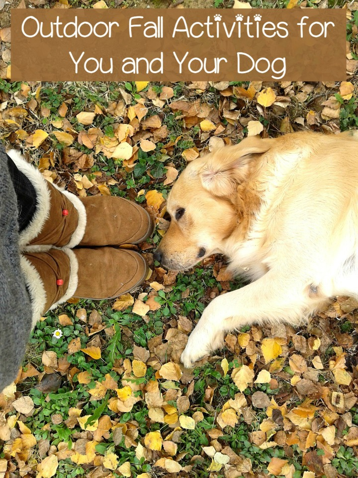 Outdoor Fall Activities for You and Your Dog